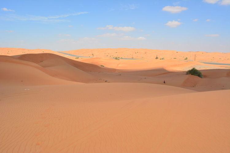 United Arab Emirates Dubai Dubaidesert VAE Wüste  Dunes Kamel Sand Dune Clear Sky Full Length Desert Arid Climate Adventure Sunset Grazing Sand Shadow Dry Camel Dried
