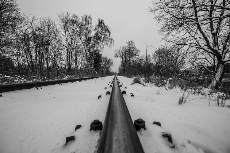 Surface Level Of Snow Covered Railway Tracks Along Bare Trees