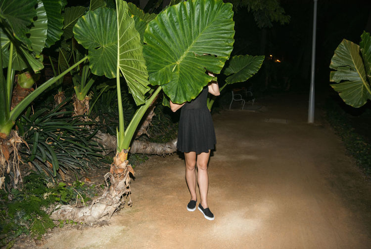 Low section of woman standing by big leaf