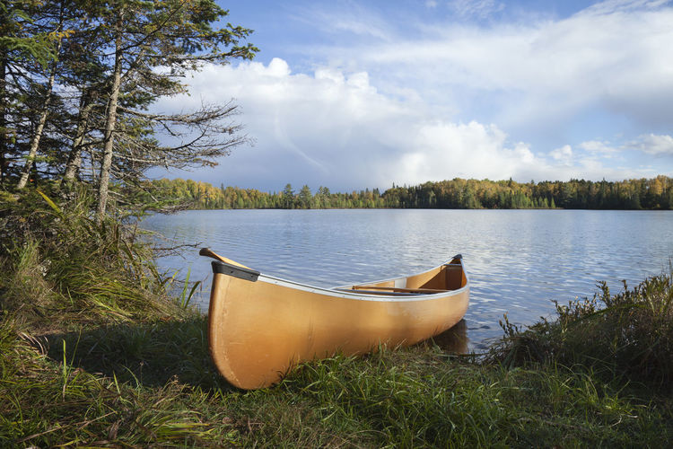 Canoe on shore of northern Minnesota lake during autumn Autumn Canoe Grass Recreational Boat Reflection Sunlight Trees Aspen Beauty In Nature Birch Clouds Color Image Day Horizon Over Water No People No People, Orange Color Paddle Photography Pine Tree Scenics - Nature Shore Tranquility Water Yellow