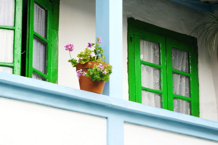 vintage house balcony with green windows and flower pot Antique House Architecture Balcony Balcony View Building Exterior Built Structure Flower Flower Pot Flower Pots Green Color Green Window House No People Vintage House Window Window Sill Window View Windows