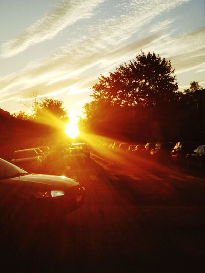 Just walking down the street and this lifts up your day:)Sunset Sunlight Car Cloud - Sky No People Sky Scenics Tree Outdoors Road Nature Beauty In Nature Day Burst Of Sun First Eyeem Photo EyeEmNewHere