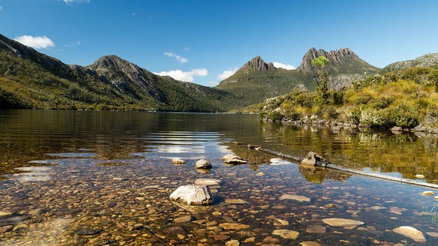 Scenic view of dove lake