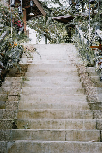 High angle view of steps by building
