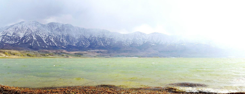 Iran Shot Monochrome Foggy Morning Spring Taking Photos Happy Time Friendly Trip Photo Trip