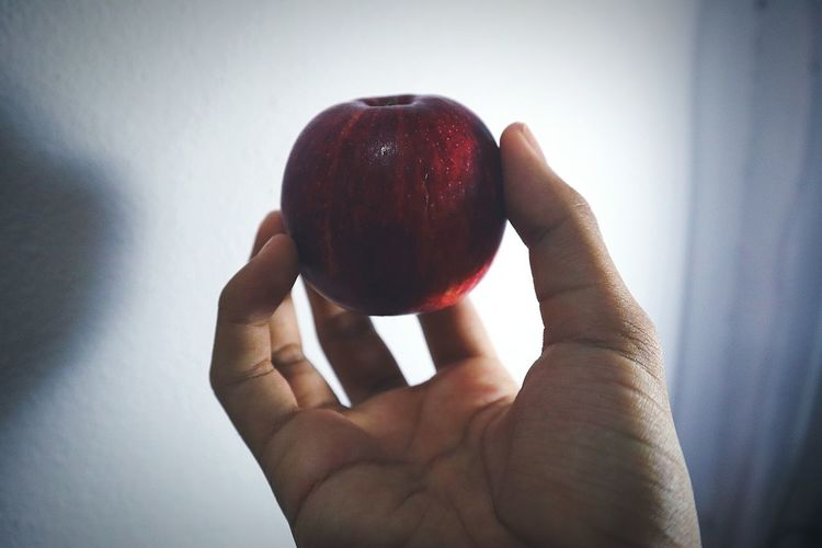 Apple in my hand. Photography Fruit Photography Hard Hard Light Apple Healthy Eating Fruit Red Apple Picture Cool Poison Apple Rot Healthy Food This Is Natural Beauty