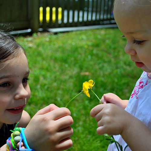 Close-Up Of Sisters Touching Yellow Flowers In Lawn