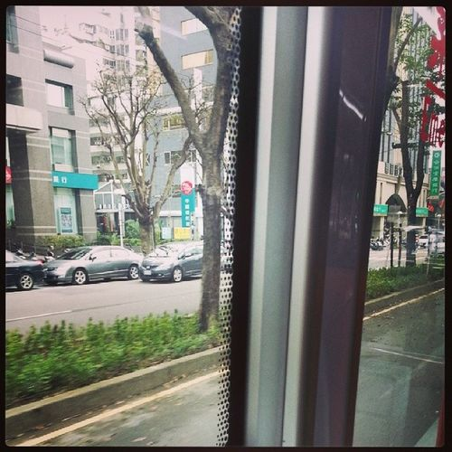 喜歡坐公車的悠閒。 不用花心思。 美麗下午時間