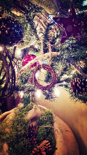 Alphabetography Christmastree Letter O