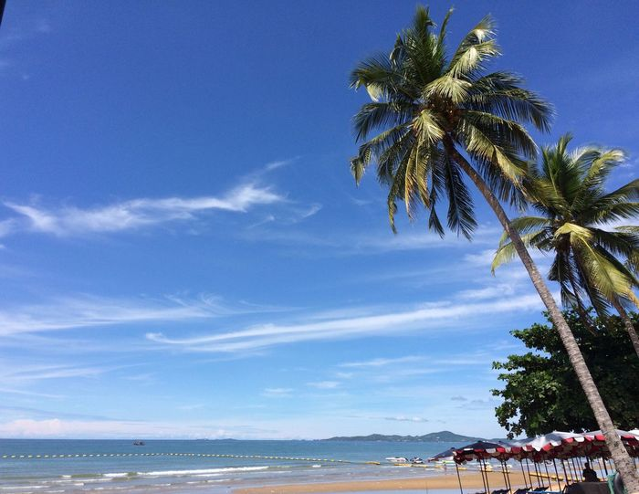 Blue Sky & Sea Sky Beach Sea First Eyeem Photo