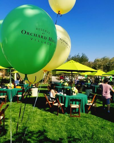 Balloon Celebration Green Color Party - Social Event Large Group Of People Event Celebration Event Arts Culture And Entertainment Enjoyment People Birthday Helium Balloon Sky Happiness Men Grass Adult Crowd Day Outdoors
