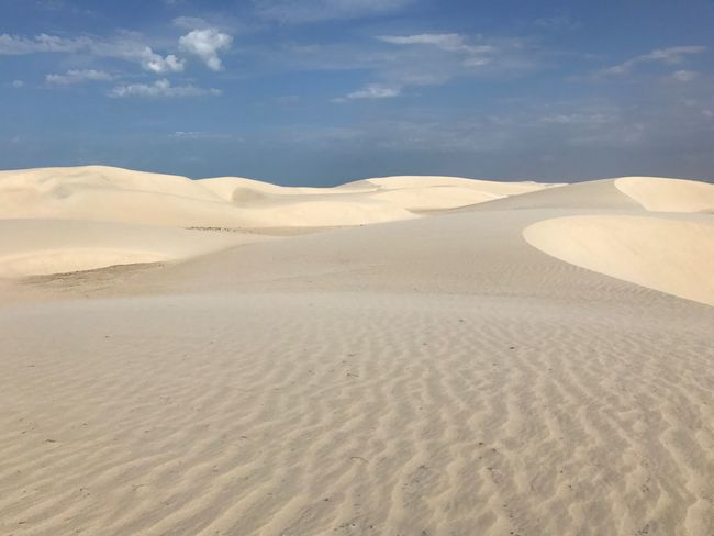 Sand Dune Tranquil Scene Beauty In Nature