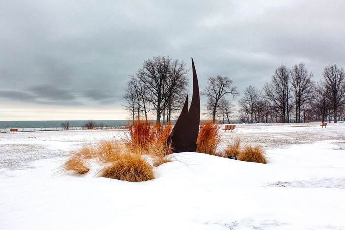 How's The Weather Today? Winter Wonderland ❄ Lake Erie Cleveland EyeEm Nature Lover
