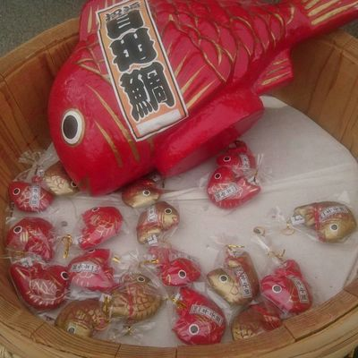 色々なおみくじありますね(*^^*) Red High Angle View Indoors  Celebration No People Chinese New Year Christmas Close-up Day