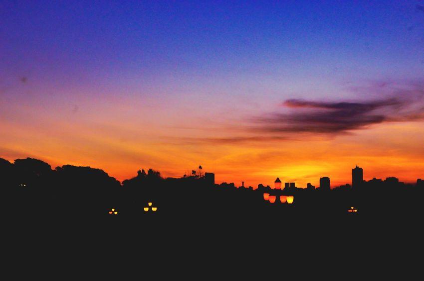 jardim botânico 😍 Sunset Urban Skyline Silhouette Sky Architecture