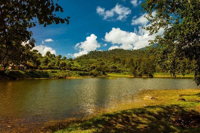 Holiday Nature Lake Situ Patenggang Trees Beautiful First Eyeem Photo
