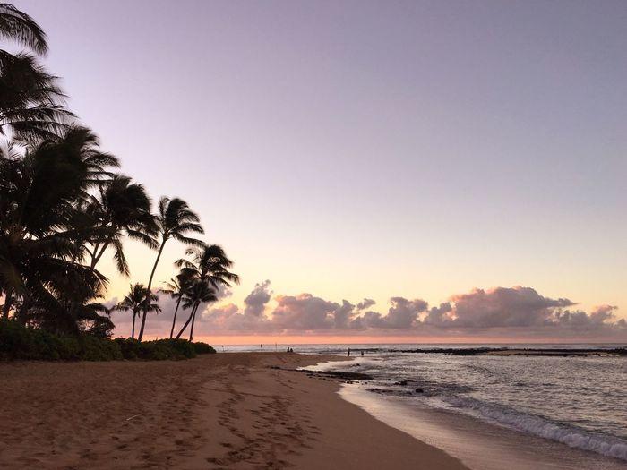 View of beach at sunrise