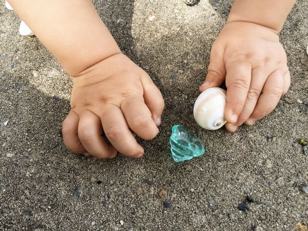 Baby hands holding toys Adorable Baby Child Childhood Children Close Up Close-up Cute Fingers Ground Hands High Angle View Holding Human Finger Kids Little On The Floor Person Playing Small Snail Snails Toy Toys With
