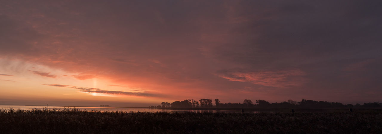 At Sunrise Animals In The Wild Bodden Nature Panorama Sunrise Collection Animal Themes Beauty In Nature Birds Flying Sunrise