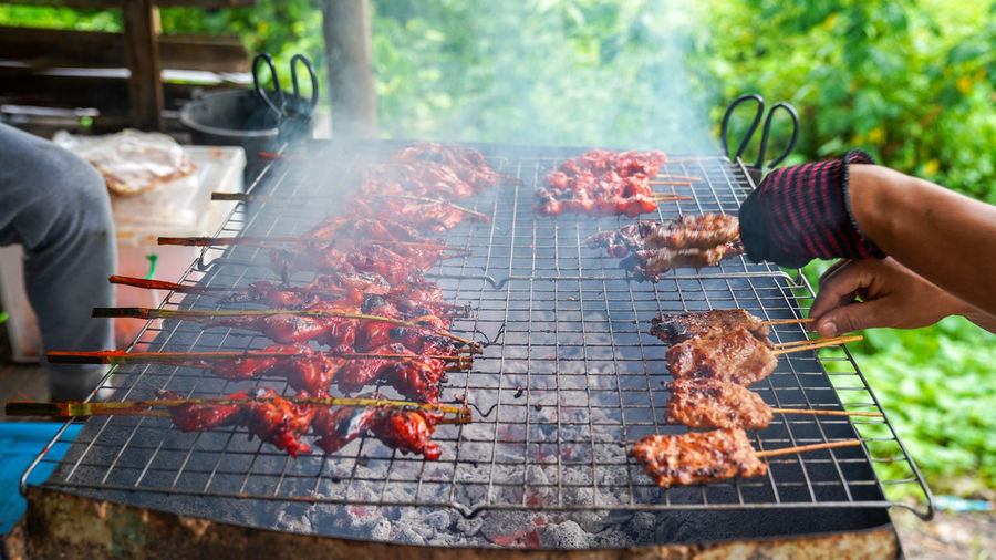 Barbecue Food And Drink Food Meat Human Hand Barbecue Grill Human Body Part Hand Heat - Temperature Preparation  Day People Grilled Holding Freshness Leisure Activity Lifestyles Nature Adult Preparing Food Outdoors Grilled Chicken Grilled Chicken .Thailand Food Style Smoke Cancer