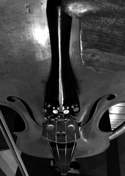 Violin flip Singing Violin Sunday Mass Enlight IPhoneography From My Point Of View Iphoneonly Sunday_flip Blackandwhite