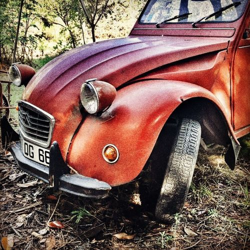 Iconic French car for over 50 years, the Citroen 2CV. Car Classic Car Citroen 2cv Iconic French Old-fashioned Land Vehicle Mode Of Transport Obsolete Outdoors Metal Rusty Day No People