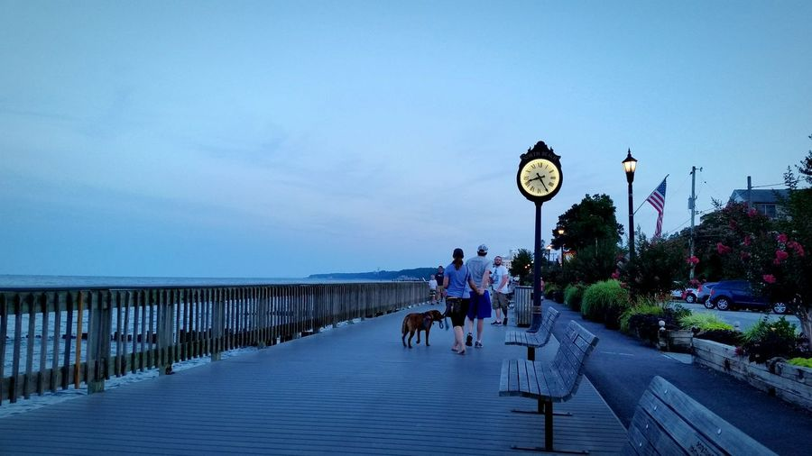 Rear View Of Couple With Dog On Boardwalk Against Sky