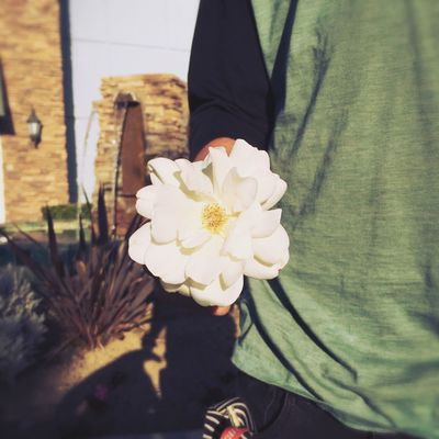 sometimes the element of surprise is the most important thing in a relationship; he surprised me with a white rose after dinner Love Cute White Rose Dinner Alwayshandedflowers Flowers Rosé Romance