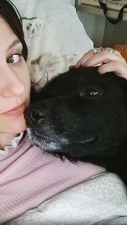 Pets Vet  Women Dog Portrait Close-up