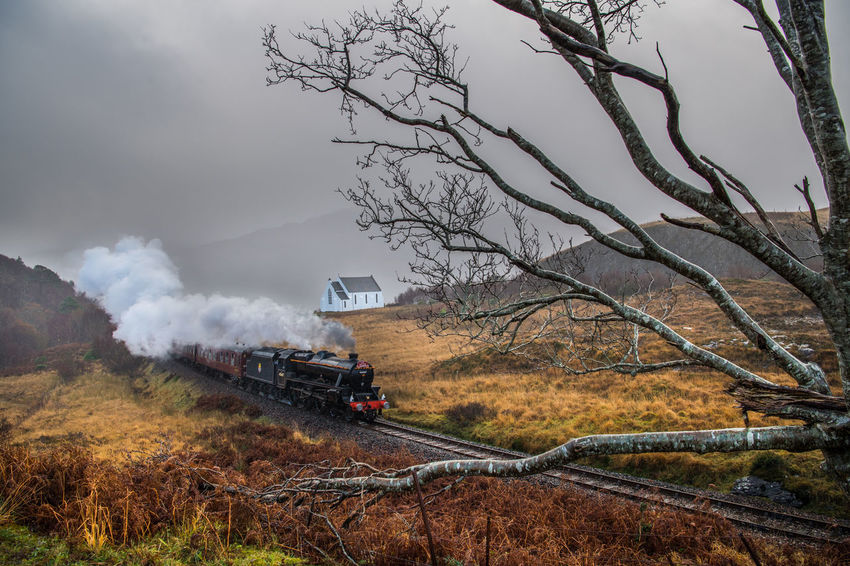 An unique moment and a special encounter with the beautiful Hogwarts Express - The Jacobite - passing by the Church of Our Lady of the Braes in the Highlands, Scotland, last December. Church Hogwarts Scotland Steam Bare Tree Branch Day Hogwarts Express Locomotive Nature No People Outdoors Railway Smoke - Physical Structure Steam Train Steamtrain The Highlands Thejacobite Train Train - Vehicle Transportation Tree