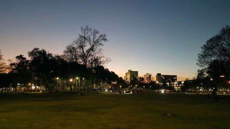 La conquista del conocimiento City Life Blackandwhite Photography CDMX ❤ Streetphotography Colors Ciudad Universitaria Goodnight Good Times Photography