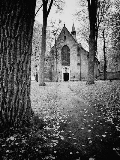 Belgium Bruges Church Tree Black And White Black & White Architecture Built Structure Day Building Exterior Outdoors No People Sky
