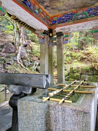 Ablution Cleaness Japanese Culture Japanese Tradition Shinto Bamboo Grove 日光市 Sacred Place Japan 神道 Built Structure Day Architecture Indoors  Sunlight Water No People