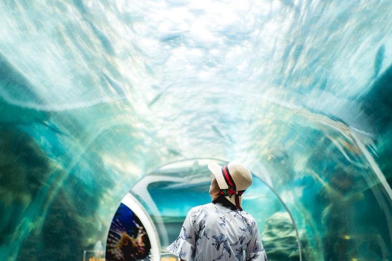 Rear View Of Woman Wearing Hat Standing At Underwater Aquarium