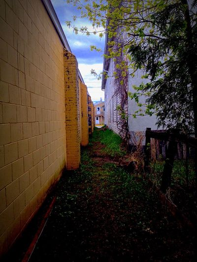 Hidden back alley in Fort Frances, ON 🇨🇦
