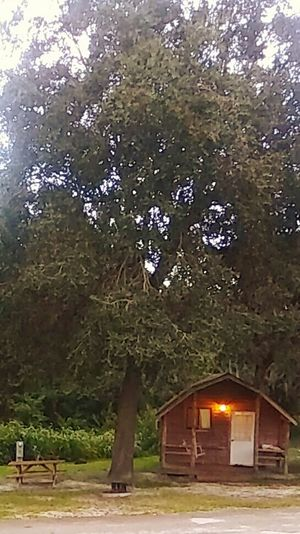 Outdoors Nature Grass Day Sky Cabins  Cabin Life Cabininthewoods Cabin Love ♥