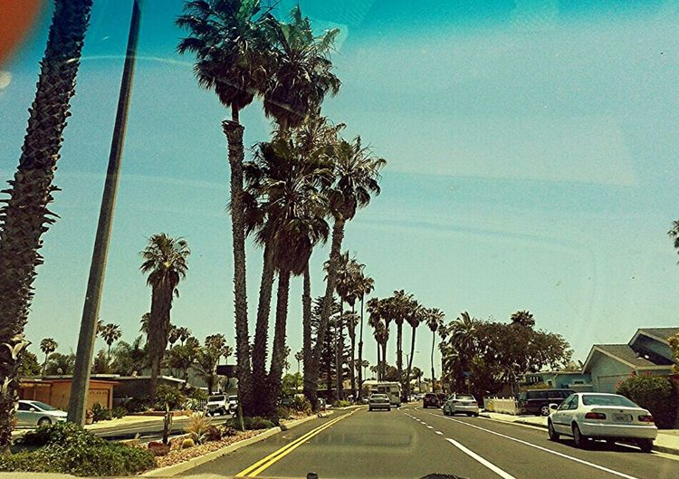 Southern California Enjoying The Sun Outdoors Holiday POV The Street Photographer - 2015 EyeEm Awards The Photojournalist - 2015 EyeEm Awards The Adventurer - 2015 EyeEm Awards Vacation Time The Traveler - 2015 EyeEm Awards The Action Photographer - 2015 EyeEm Awards