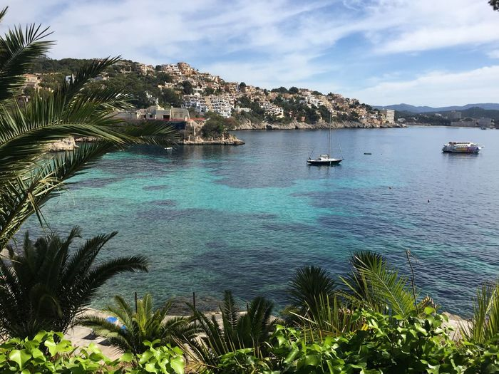 Summer Summertime Holidays Vacation Time Vacations Beach SPAIN Mallorca Water Nautical Vessel Sky Transportation Tree Sea Plant Cloud - Sky Nature Beauty In Nature Outdoors No People Travel Sailboat Yacht Mode Of Transportation Scenics - Nature Day