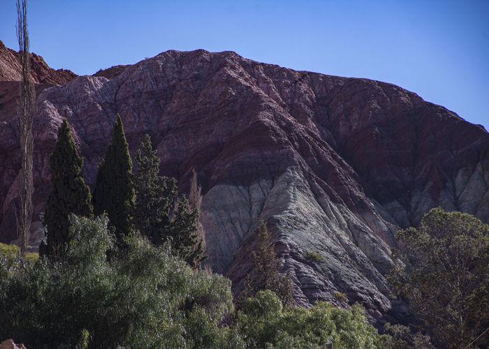 Cerro de los