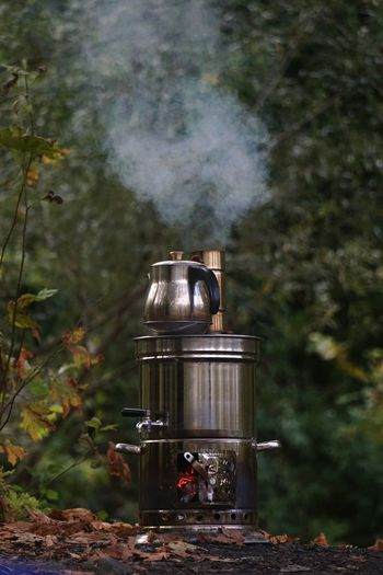Camping stove against trees