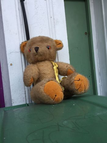EyeEm Selects More random abandoned toys poor teddy left on top of a bin in South London. Stuffed Toy Teddy Bear Toy No People Childhood Close-up Day Randomness Random Unnatural Beauty Unnatural Not Natural Fragility Unusual South London Street Life Sad & Lonely Sad Nopeople IPhoneography Street Photography StillLifePhotography Natural Light Still Life