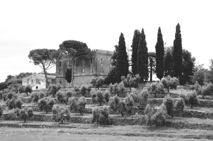 Toscane Toscana Dolcevita  Ig_firenze Italia