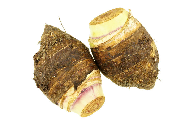 Taro or Colocasia esculenta is root isolated on white background. Isolated Raw Vegetarian Arrowroot Brown Colocasia Cut Out Esculenta Food Fresh Healthy Root Studio Shot Taro Vegetable White Background