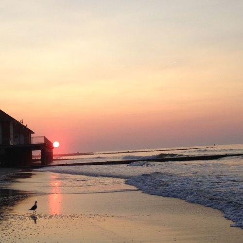 Beach Sunrise Atlantic Ocean Atlantic City Good Morning Summer