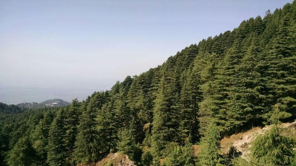 EyeEm Best Shots - Landscape Eye Em A Traveller Dhauladhar Amazing View Triundtrek ColorPalette