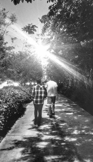 Rear View Walking Two People Sunlight Outdoors Togetherness Full Length Tree Nature Sidewalk Photograhy Black And White Photography Lights And Shadows Flannel Shirt Light And Dark Young People People Walking By Florida Photography Coconut Creek Strolling Along The Path Stroll Around Town Lost In The Landscape