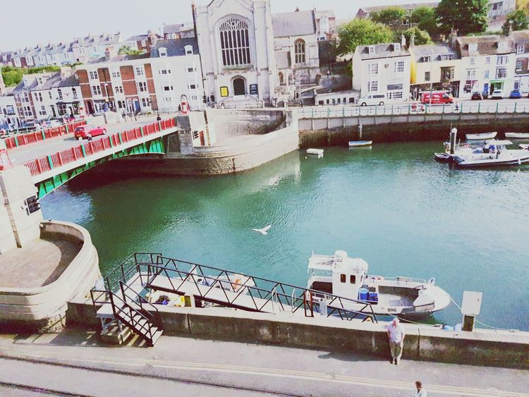 On The Balcony Flying Birds Over The River Capturing The Moment fast moving object Weymouth Dorset