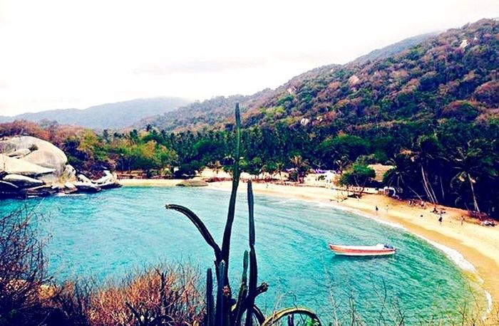 Parque tayrona- Colombia Tranquility Beauty In Nature