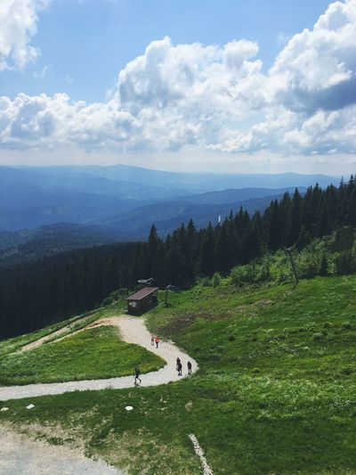 Mountain Czech Germany Adventure Hike Hiking Plant Cloud - Sky Sky Beauty In Nature Scenics - Nature Tree Nature Environment Day Tranquility Landscape Tranquil Scene Land Green Color Grass High Angle View Growth Non-urban Scene No People Road
