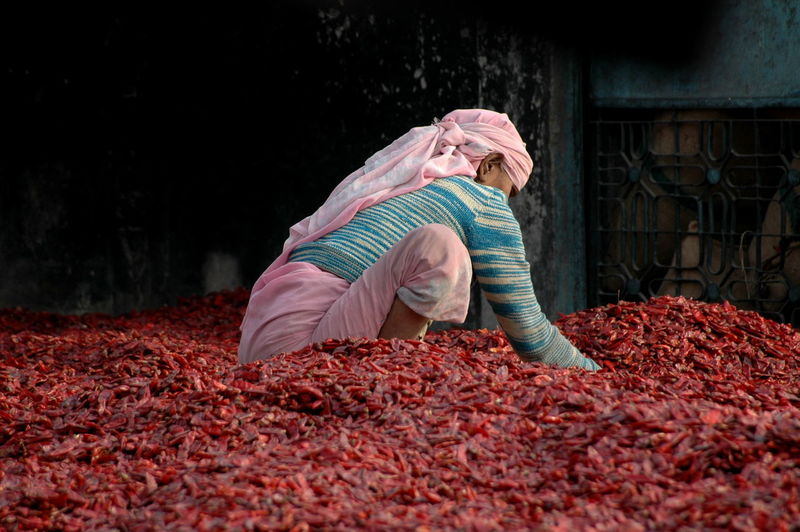 Woman and the chili peppers Chili Pepper India New Delhi Red Woman Chilipeppers People Real People First Eyeem Photo